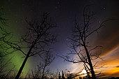 Moonrise and aurora borealis, Lake Laberge, Yukon Territory, Canada.