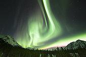 Bright aurora borealis, Annie Lake, Yukon Territory, Canada.