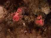 Eagle Nebula (Messier 16), and Swan Nebula (Messier 17).