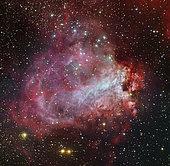 The Omega Nebula in the constellation Sagittarius.