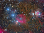 A wide-field over Orion.