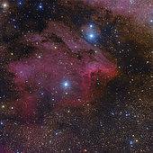 The Pelican Nebula.
