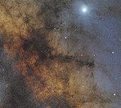 The Pipe Nebula.