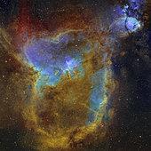 IC 1805, the Heart Nebula.