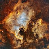 NGC 7000, the North America Nebula, and IC 5070, the Pelican Nebula.
