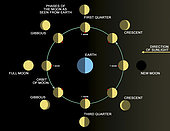 A diagram showing the phases of the Earth's moon.