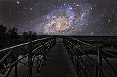 Bridge on a distant planet near the Triangulum Galaxy.