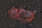 Sh2-199, the Soul Nebula.