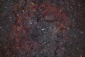 VdB 142, the Elephant Trunk Nebula.