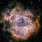 The Rosette Nebula is a large, circular H II region located near one end of a giant molecular cloud in the Monoceros region of the Milky Way Galaxy.