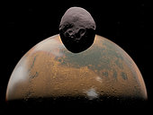 Artist's concept of how Mars and its tiny satellite Phobos might appear from a distance of about 100 miles from Phobos' surface. In this image Phobos is passing over the low martian plains of Syrtis Major. Below the plains extending down to Mars' terminator and beyond is the heavily cratered Terra Sabaea. Clouds of water-ice crystals are forming at the terminator between light and dark. . Phobos is the larger of Mars' two satellites, with a length of about 16 miles and about 11 miles across its smallest dimension. Phobos does not have enough mass for gravity to pull it into a uniform sphere like the larger satellites and planets in the Solar System. . Phobos may be an asteroid long ago captured by Mars' gravity, orbiting a mere 5,800 miles above Mars' surface, making it the closest satellite to its host planet in the Solar System. Phobos' orbit is so low that it completes one revolution in less than eight hours, easily outpacing by threefold Mars' rotation period of 24 hours, 40 minutes. The resulting tidal forces are causing Phobos' altitude to decay at the relatively rapid rate of 6 feet per century; in about 50 million years Phobos will either be torn apart by Mars' gravity or crash into the martian surface.