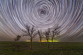 Star trails under the trees in the steppe of Russia.