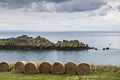 Catamarans at Pointe du Grouin, Emerald Coast, Brittany, France