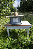Asian predatory hornet control: preventive and autonomous capture tank. The first selective device for capturing Asian hornets and preventing nests in Europe. Produced by Jabeprode in Finistère. France