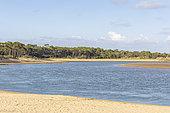 Estuary of Payré, Veillon Beach, Natura 2000 site, Talmont St Hilaire, Vendée, Pays de Loire, France