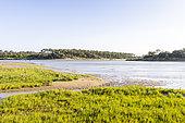 Estuary of Payré, Guittière Port, Natura 2000 site, Talmont St Hilaire, Pays de Loire, Vendée, France