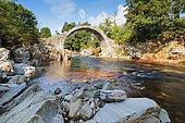 Carrbridge with Dulnain River, Scotland, Great Britain