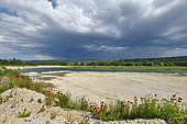 Quarry in operation, nesting site of European Bee-eater (Merops apiaster), Sand Martin (Riparia riparia) and Little ringed Plover (Charadrius dubius), Oselle, Doubs, France