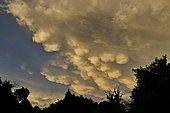 Mammatus cloud formation in summer, Brognard, France