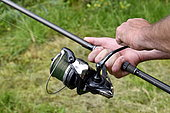 Carp fishing, Fishing reel, Malsaucy pond in Belfort, France