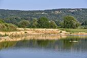 Carrière en exploitation, site de nidification de Guêpier d'Europe (Merops apiaster), Hirondelle de rivage (Riparia riparia) et Petit gravelot (Charadrius dubius), Oselle, Doubs, France