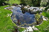 Creating a pond in a garden, France