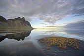 Water reflection, Vestrahorn, Klifatindur, Höfn, Austurland, Iceland, Europe