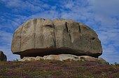 Le Camembert rock formation, rocky coast along the Sentier des douaniers, GR 34 Custom Officers Route, Ploumanac'h, Côte de Granit Rose, Cotes d'Armor, Brittany, France, Europe