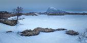 Gymsoya in winter, Lofoten, Norway