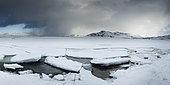 Ice floe on the shore, Vestvagoya, Lofoten, Norway