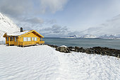 Traditional house on the Ytresand coast in winter, Lofoten, Norway