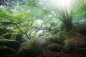 Rocky chaos in the Huelgoat forest in autumn, Finistère, Brittany, France