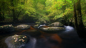 River in Huelgoat forest in autumn, Finistère, Brittany, France