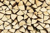 Firewood stacks, Beech wood, spring, Northern Vosges, France