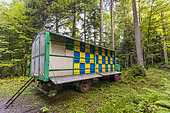 Hive truck in a forest, Slovenia