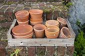Clay pots in a crate, summer, Pas de Calais, France