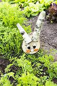 Decorative birch wood rabbit in a vegetable garden in spring, Pas de Calais, France