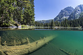 Lake Poursollet and the Taillefer massif in the background, Ecrins National Park, Alps, France