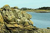 Rocky shoreline, Batz Island, Brittany, France