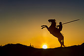 Gardian (cowman) and his Camargue horse, backlighting at sunrise, Camargue, France