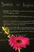 UK/England, Brighton. Brighton, beakfast menu