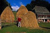 Montenegro/Durmitor. Durmitor mountains, haystacks