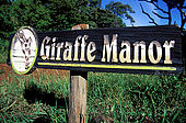 Kenya, région de Nairobi, le Manoir aux Girafes
