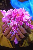 IN*Maroc, vallée du Dadès, gros plan sur mains de femme tenant pétales de roses