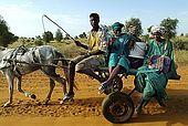 Senegal, Saint Louis, nomad peulh