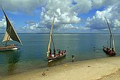Kenya Lamu archipelago Pate island Mtangawada beach