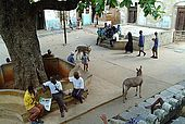 Kenya Lamu archipelago Lamu town Main square Mkunguni