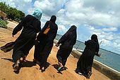 Kenya Lamu archipelago Lamu town