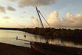 Kenya Lamu archipelago Pate island