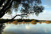 Uruguay, pampa, Mercedes, rio Negro